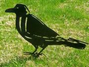 L'artiste dessine et taille des corbeaux qui, de... (Photo Michèle LaFerrière) - image 1.0