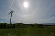 Paysage d'éoliennes près de Cap-Chat.... (PHOTO FRANÇOIS ROY, LA PRESSE) - image 3.0
