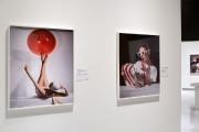 Détail de l'installation de l'exposition Horst: photographe de... (PHOTO MARILYN AITKEN, FOURNIE PAR LE MUSÉE MCCORD) - image 5.0