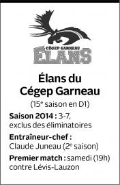 La région de Québec abrite dorénavant quatre équipes... - image 1.0