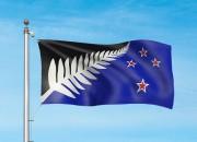 La fougère emblématique de l'équipe de rugby des All Blacks est présente sur... - image 2.1