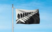 La fougère emblématique de l'équipe de rugby des All Blacks est présente sur... - image 3.0
