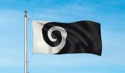 La fougère emblématique de l'équipe de rugby des All Blacks est présente sur... - image 3.1
