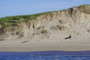 Loin au large de la Nouvelle-Écosse, l'île de... (Photo Marie Tison, La Presse) - image 3.0