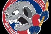 La Ligue de hockey senior A de la Mauricie aura un visage bien différent cette... - image 2.0