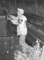 Un individu suspect est recherché par le Service... (Photo fournie par le SPS) - image 1.0