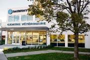 Les cinq médecins vétérinaires actionnaires du Groupe vétérinaire... (Photo Le Soleil, Pascal Ratthé) - image 1.0