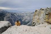 Le sentier de la John Muir Trail,... (Photo Marie-Soleil Desautels, La Presse) - image 3.0