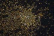 La ville italienne de Milan, avant sa transition... (NASA/ESA) - image 8.0