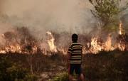 Comme chaque année pendant la saison sèche, la... (PHOTO BAY ISMOYO, AFP) - image 1.0