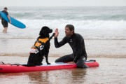 Depuis deux ans, un tournoi de surf canin... (PHOTO FOURNIE PAR LES TOUTOUS SURFEURS) - image 2.0