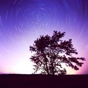 Merci aux photographes couche-tard et amateurs d'astronomie qui... (@frankipre) - image 2.0