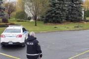 Les policiers nagent en plein mystère à la... (Alain Dion, La Voix de l'Est) - image 1.0