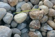 Les frayères renfermeront 150 tonnes de pierres chacun... (Photo courtoisie) - image 1.0