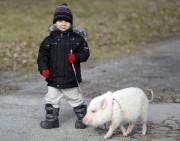 Le petit Jake, le fils de Marie-Claude Bouchard,... (Photo Le Quotidien, Jeannot Lévesque) - image 2.0