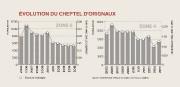 Les restrictions imposées aux chasseurs au cours des... (Infographie La Tribune) - image 1.0
