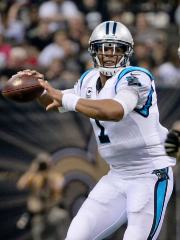 Cam Newton a lancé cinq passes de touché... (Photo Derick E. Hingle, USA Today) - image 2.0