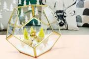 Ce terrarium hexagonal, réalisé par un artisan montréalais... (PHOTO BERNARD BRAULT, LA PRESSE) - image 5.0
