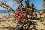 Le vélo est un excellent moyen d'atteindre les... (PHOTO CHARLES-ÉDOUARD CARRIER, COLLABORATION SPÉCIALE) - image 2.0