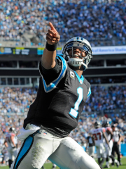 Cam Newton et les Panthers de la Caroline... (Photo Sam Sharpe, USA Today) - image 2.0