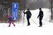 Pour leur part, les amateurs de ski de... (Photo Le Quotidien, Jeannot Lévesque) - image 1.0