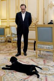 Le président français François Hollande en compagnie de... (Photo présidence française via AFP) - image 1.0