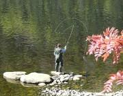 C'est avec cette photo d'un pêcheur à la... (Photo courtoisie) - image 2.0