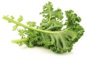 Étienne Huot aime le kale, qui est de... (PHOTO THINKSTOCK) - image 3.0