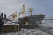 Le premier bateau de l'année, le Anette.... (François Gervais) - image 3.0
