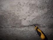 Si le tournevis s'enfonce facilement à plusieurs endroits... (PHOTO André Dumont, collaboration spéciale) - image 1.0