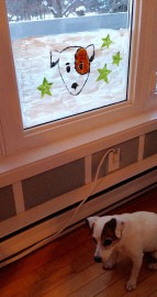 Votre chien jappe en regardant par la fenêtre... (Photo Le Progrès-Dimanche, Mélissa Viau) - image 2.0