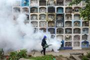 Le virus Zikaa débarqué en Amérique du Sud... (PhotoERNESTO BENAVIDES, Agence France-Presse) - image 1.1