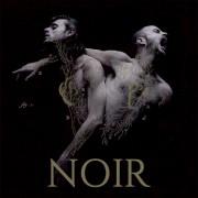 Après des années de tournée et un premier album studio intituléNoir, le... - image 2.0