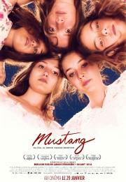 L'affiche du film Mustang... (Image fournie parMétropole Films) - image 2.0