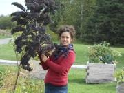Émilie Lapointe, biologiste et chargée de projets chez... (Eurêko!) - image 1.0