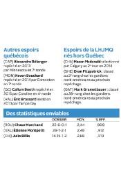 CHRONIQUE / Vous vous souvenez de la saison... (Infographie La Tribune, Marie-Ève Girard) - image 1.0
