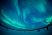 Les sorties aux aurores débutent à 20h et... (PHOTO BERNARD BRAULT, LA PRESSE) - image 4.0