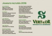 L'équipe de football du Vert & Or de... (Infographie La Tribune, Marie-Ève Girard) - image 1.0