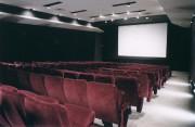 Rejoindre le plus vaste public n'a jamais été... (Photo fournie par la Cinémathèque québécoise) - image 1.0
