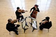 Le Quatuor Bozzini... (PHOTO MICHAEL SLOBODIAN, FOURNIE PAR LE QUATUOR BOZZINI) - image 2.0
