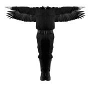 Le vol de l'aigle, 2015, Mathieu Beauséjour, animation... (PHOTO FOURNIE PAR LE MUSÉE DES BEAUX-ARTS DE MONTRÉAL) - image 2.0