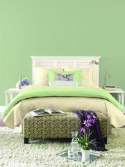 Les couleurs froides, telles que le vert Sauge... (Les Peintures CIL) - image 1.0