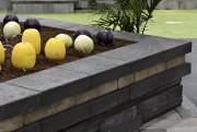 Les potagers surélevés, une idée proposée par Jamo.... (Le Soleil, Patrice Laroche) - image 3.0
