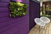 Les couleurs vibrantes et les murs végétaux font... (Le Soleil, Patrice Laroche) - image 7.0