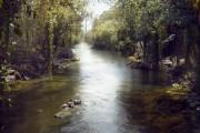Le livre de la jungle... (Fournie par Buena Vista) - image 2.0