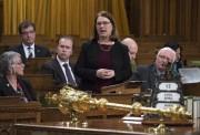 La ministre fédérale de la Santé, Jane Philpott,... (La Presse Canadienne, Adrian Wyld) - image 3.0