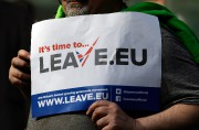A 'Leave' supporter holds a banner near the... - image 1.0