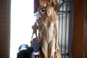 Sculpture de Victoir Dallaire... (Progrès-dimanche, Jeannot Lévesque) - image 2.0