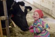 Guillaume Bergeron veut faire de la production laitière... (Photo Le Progrès-dimanche, Jeannot Lévesque) - image 1.0