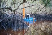 La rivière «Nightmare» est un plan d'eau stagnant,... (Photo courtoisie) - image 1.1
